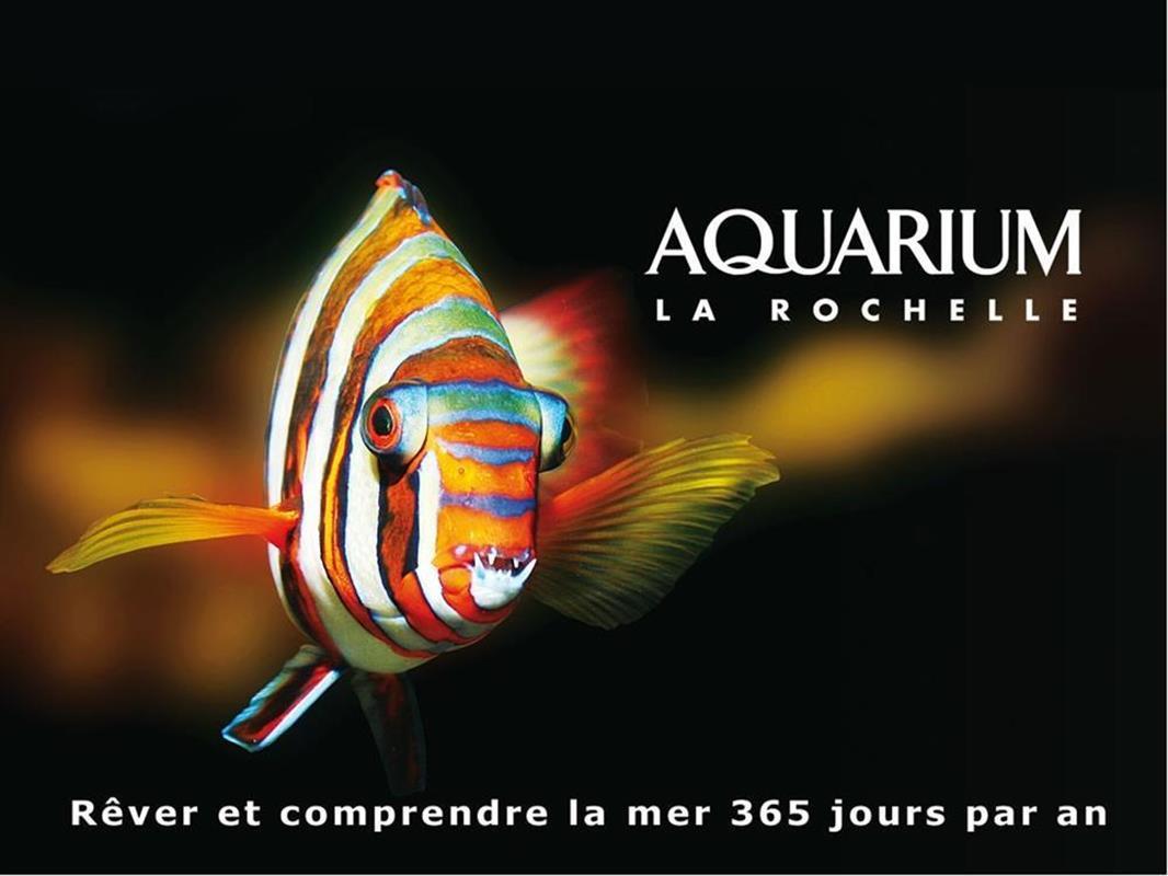 Aquarium de La Rochelle pres de lInter Hotel 3 etoiles Miramar ...